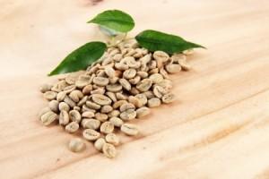 Les propriétés du café vert