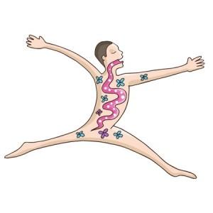 Probiotique, l'allié de votre forme et de vos formes