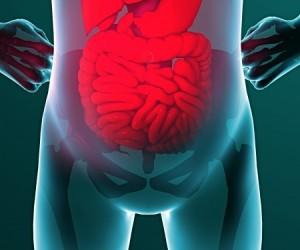 Toutes les maladies commencent-elles vraiment dans l'intestin ? Une vérité surprenante