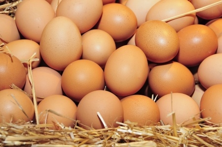 Les 20 Meilleurs Aliments sur la Planète pour Perdre du Poids