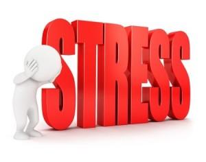 Le Stress dans l'Assiette